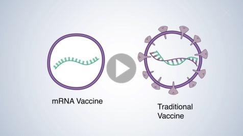 COVID-19 mRNA Vaccine video-1
