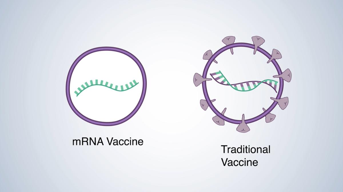 mRNA Vaccine video